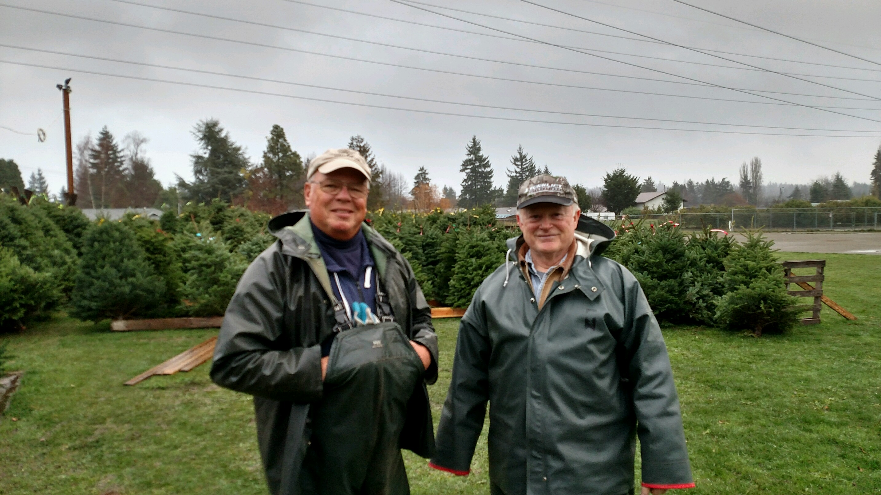 Fairwood Lions Club's Annual Christmas Tree Sales Benefit